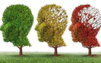 CURA GOLD ist jetzt Demenz Partner der bundesweiten Initiative der Alzheimer Gesellschaft